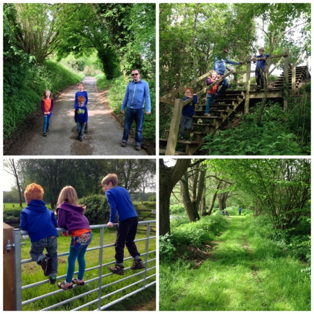 hurst farm collage-walks